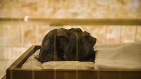 Czy w grobowcu Tutanchamona jest przejście do komnaty Nefertiti?