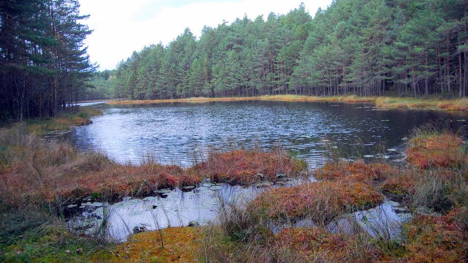 Jezioro Kalejty koło Augustowa
