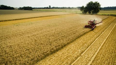 Obecnie możliwości kupienia ziemi rolnej są ograniczone