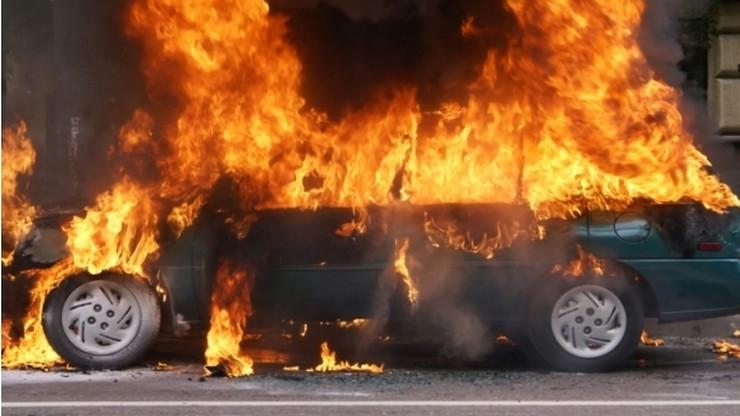 auto-gori