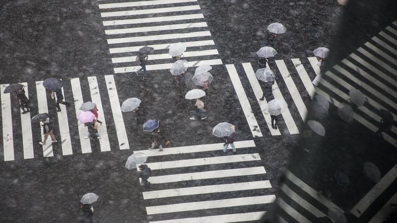 W Tokio najzimniejszy dzień od 48 lat