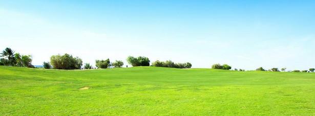 Dzięki poprawce Senatu spod rygorów ustawy będą wyłączone działki o powierzchni mniejszej niż 0,3 hektara (30 arów)