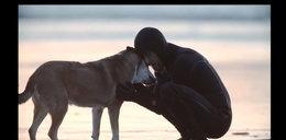 Pożegnanie z przyjacielem oczami psa. Niezwykły film