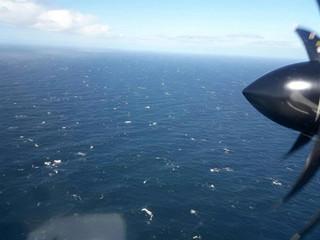 Poszukiwania argentyńskiego okrętu podwodnego. Odnotowano 'odgłos charakterystyczny dla eksplozji'