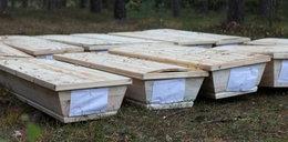 Porzucił 12 ciał w trumnach w podpoznańskim lesie