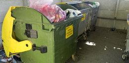 Sąsiad z bloku nie segreguje śmieci? Zapłacisz także ty