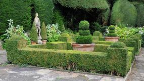 Ogród francuski czy angielski?