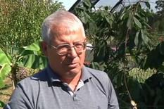 Zoran Stojanović, uzgaja bananu Dobričku kod Prokuplja