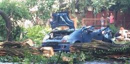 Burza zwaliła drzewo na auto. Nie żyje kobieta