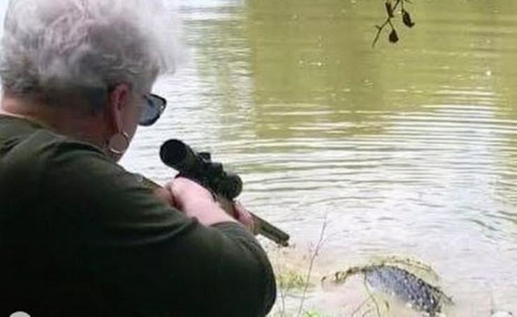 baba i aligator