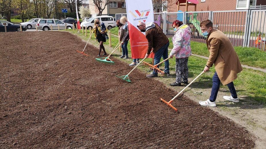 Wrocław: ruszyło wielkie sadzenie łąk kwietnych