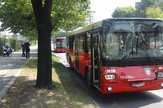 autobusi foto mitar mitrovic