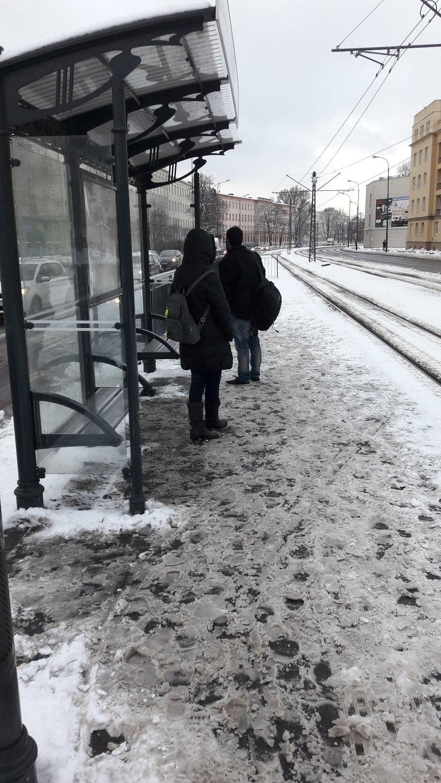 Zima w Łodzi