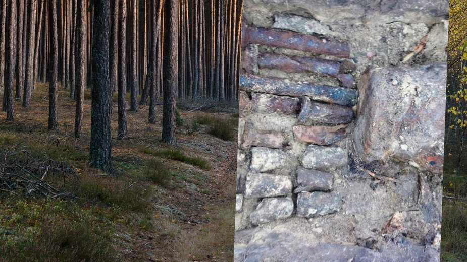 Bory Tucholskie: w jednym z lasów znaleziono bombę ważącą ponad 250 kg