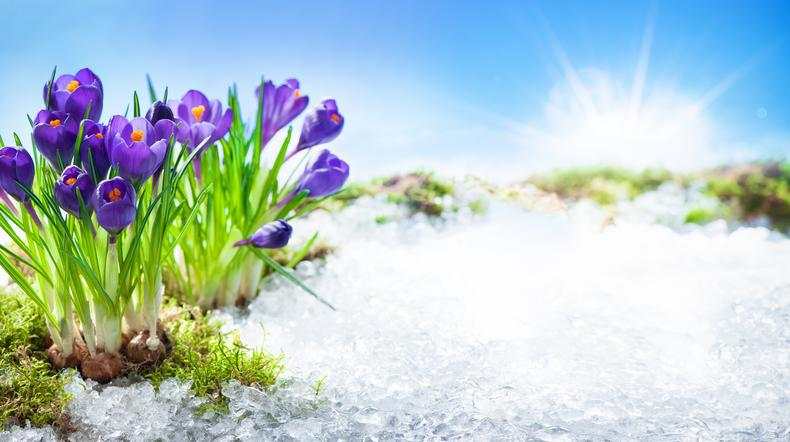 Pogoda dla Polski. Prognoza pogody na najbliższe dni - nadchodzi ocieplenie