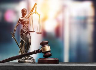 Wyniki egzaminów zawodowych: Radcowie prawni górą