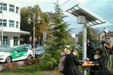 NIS01 Solarno drvo na Trgu Republike foto opstina Medijana