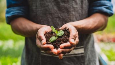Nestl� unveils plans to support the transition to a regenerative food system