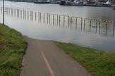 Ada Ciganlija - poplavljena staza - biciklisti