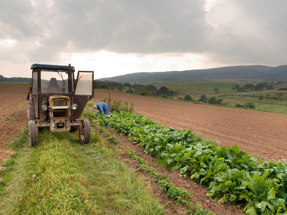 31 lipca tego roku weszła w życie ustawa z 16 kwietnia 2020 r. o zmianie ustawy – Prawo geodezyjne i kartograficzne oraz niektórych innych ustaw i wywołała nieoczekiwane wątpliwości dotyczące ubezpieczeń społecznych rolników.