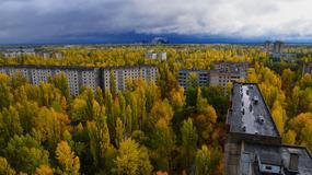 Czarnobyl po trzydziestu latach. Natura zwyciężyła