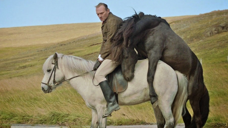 """""""O koniach i ludziach""""– film o animalizmie opowiedziany z perspektywy poety"""