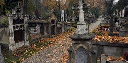 Rosjanie chcą stawiać pomnik w Krakowie