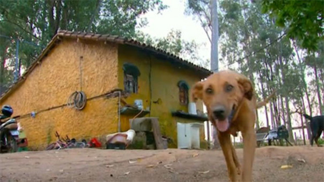 Lilika ispred svog doma na otpadu