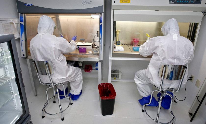 Lek na tasiemca może pomóc w zwalczaniu infekcji koronawirusowych.