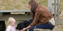 Pies księżnej Kate ugryzł dziecko!