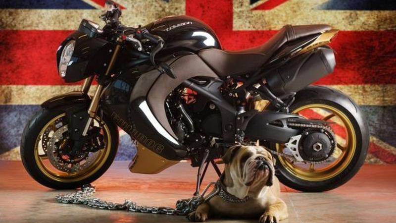 Triumpha Speed Triple Bulldog