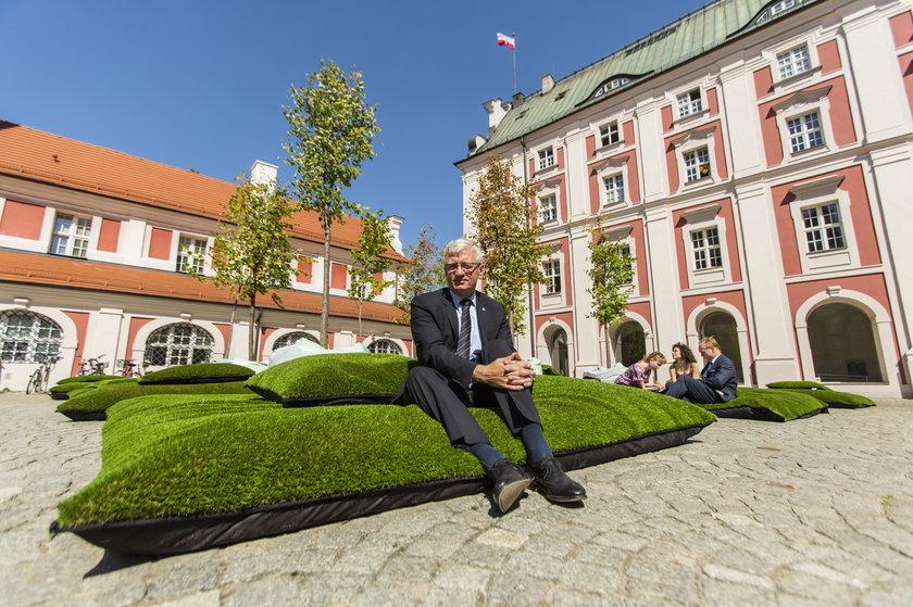 Zagospodarują dziedziniec poznańskiego magistratu