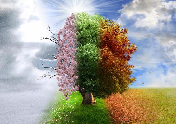 Ciclul vieții (foto: 123rf.com)