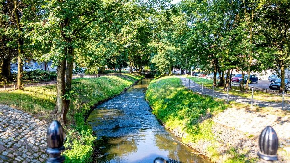 Rzeka Kłodawka w Gorzowie