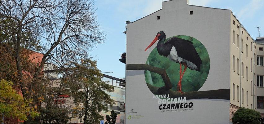 Nowy mural w Łodzi. Bocian czarny trafił na ścianę kamienicy przy ulicy Orlej. Podoba się?