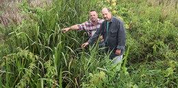 Rolnicy z Powsina apelują: Oczyśćcie nam kanałki