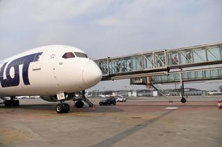 Przerwany lot z Condorem. Zakupu niemieckich linii przez PGL raczej nie uda się sifnalizować