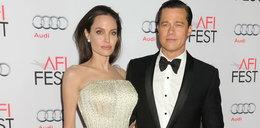 Angelina Jolie szuka nowej miłości
