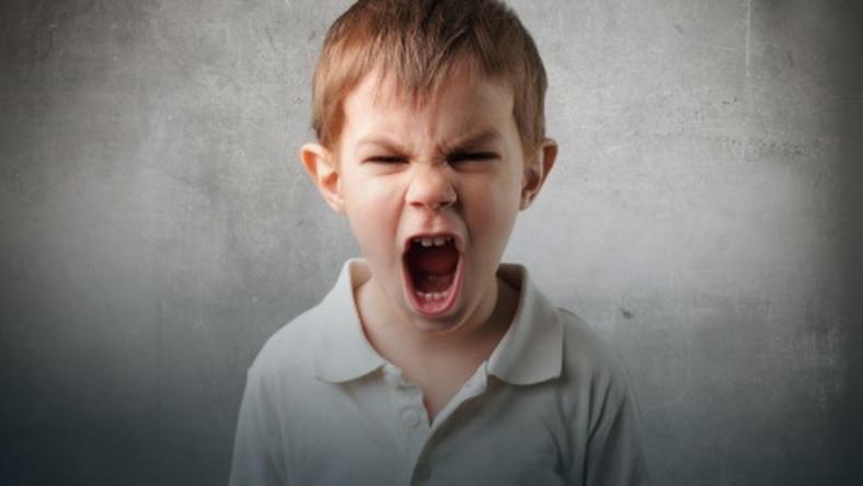 df9a427740fdcc Ataki złości u dziecka – symptom cywilizacyjny? - Dziecko