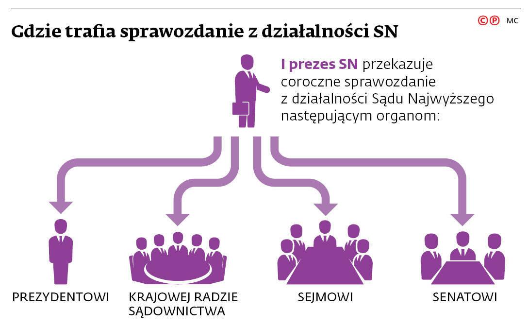 Gdzie trafia sprawozdanie z działalności SN