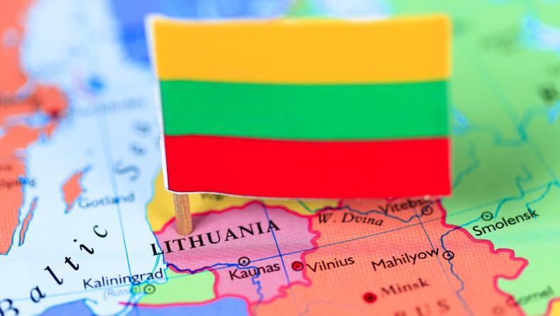 Szef MSZ Litwy: kolejne kontrole graniczne zagrażają strefie Schengen