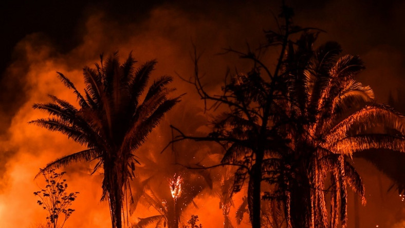 A fire viewed from the trans-Amazon BR163 highway, near Itaituba, Para state, Brazil in the Amazon rainforest, on September 10, 2019