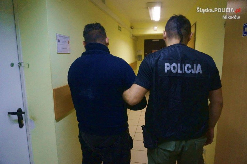 Zatrzymany 22-latek jest już w areszcie