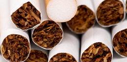 Zatrzymany za nielegalny tytoń!