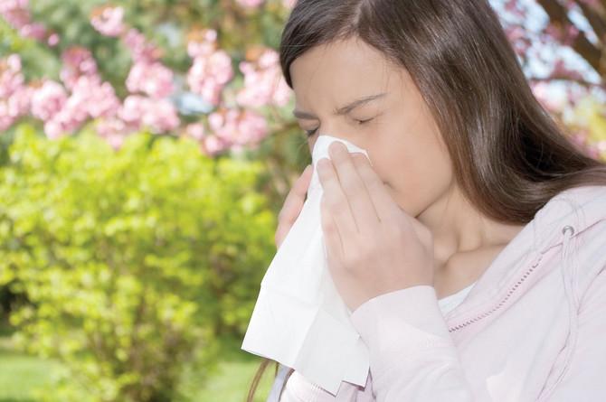 24711_alergije-shutterstock_36537934