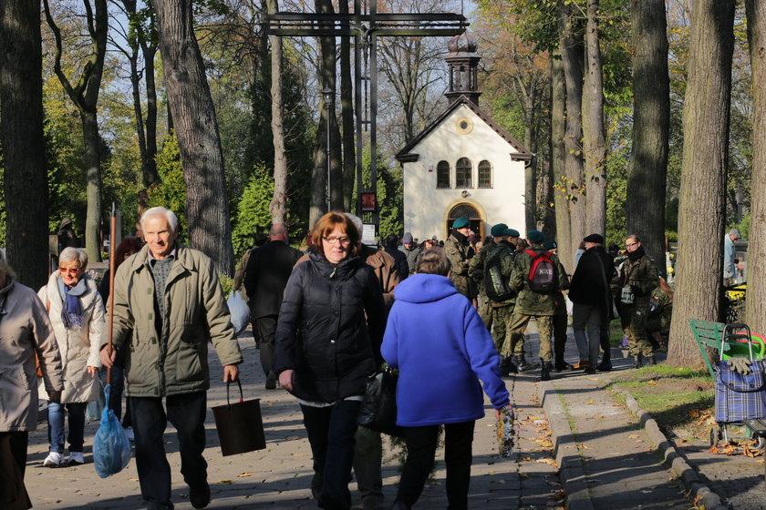 kwesta na starym cmentarzu w Łodzi