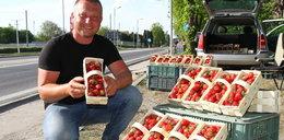 Są już polskie truskawki. Ile kosztują?