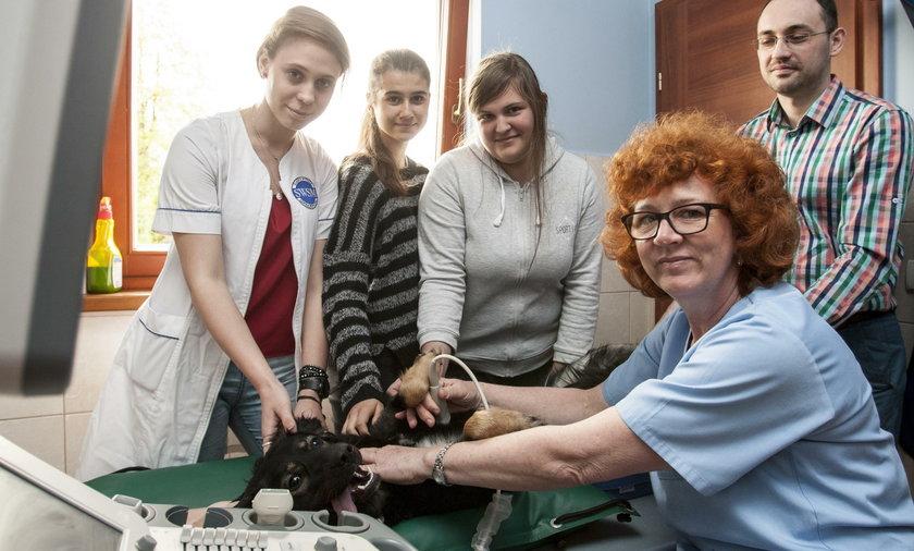 Licealiści z Tychów odbywają praktyki u lokalnych pracodawców