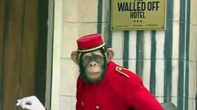 """Banksy otworzył w Betlejem """"hotel z najbrzydszym widokiem na świecie"""""""