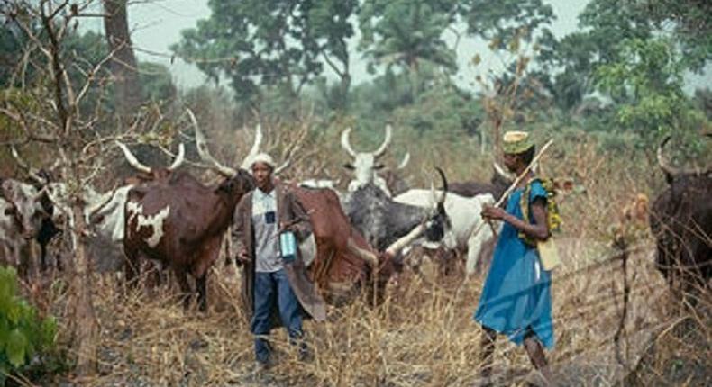 Fulani herdsmen (File Photo)